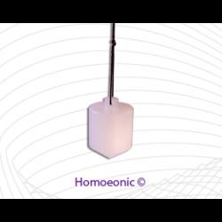 Homoeonic Pendulum