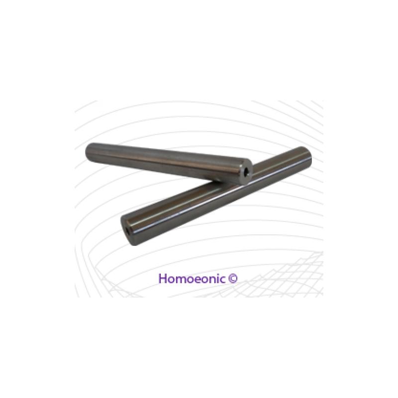 Homoeonic Electrode