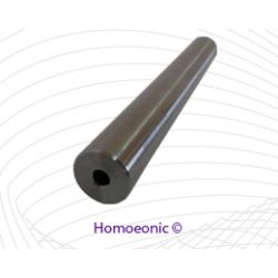 Homoeonic Electrode Side